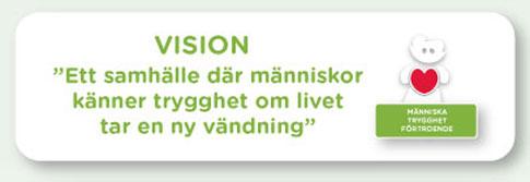 vision_försäkringskassan